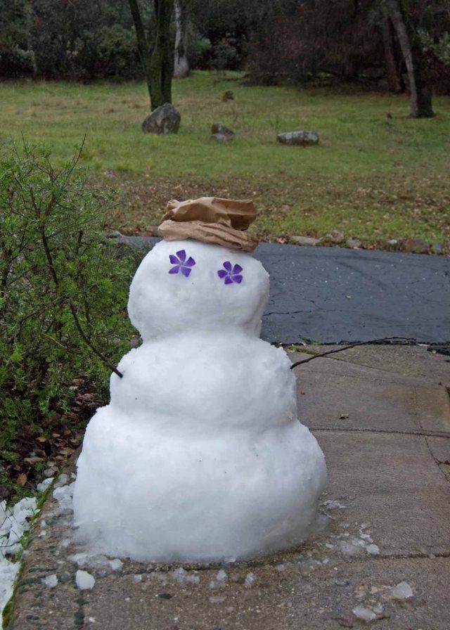 February snowoman